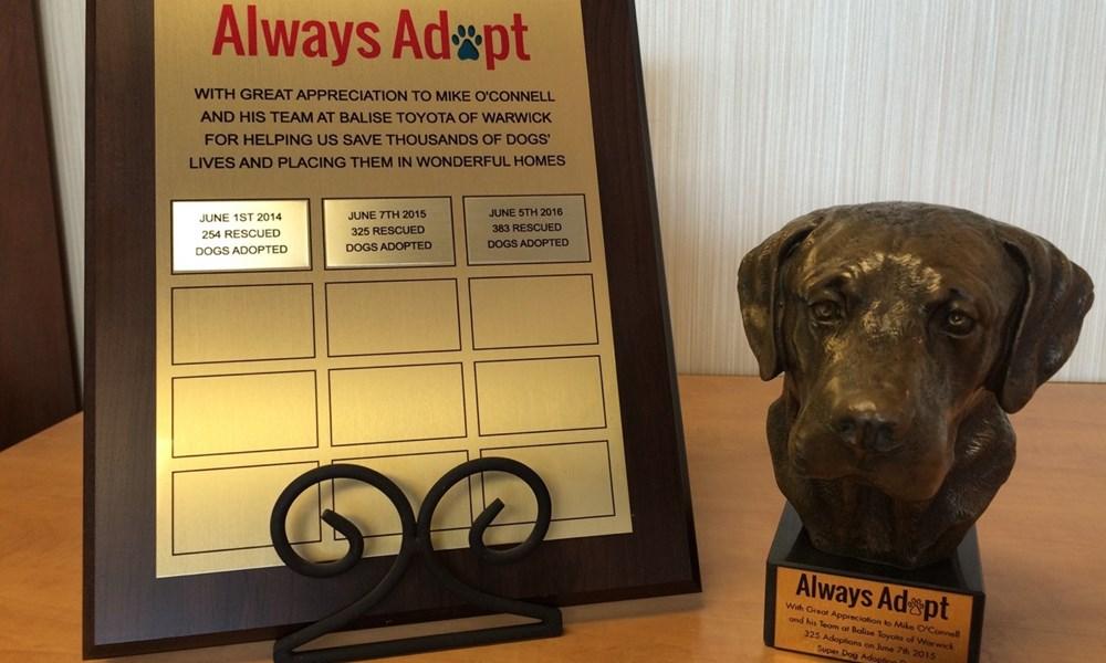 Always Adopt 2016 Awards